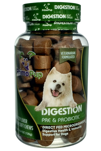 Digestion Aid for Dogs