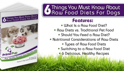 6 Things You Must Know About Raw Food Diets