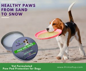 Paw Pad Shield For Dogs